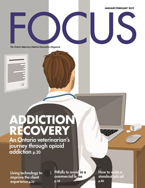 2019_JAN_FOCUS_Cover